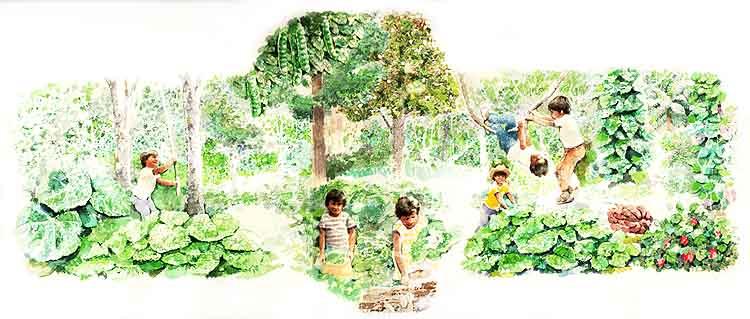 El bosque for Medio en el que habitan los arboles