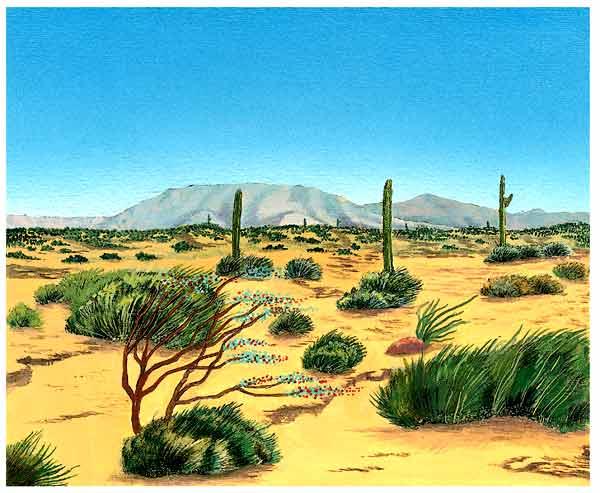 En esta imagen se ven algunos matorrales y arbustos en el desierto, se ve que hay mucho viento ya que se mueven las hojas. También se ven algunos cactus.