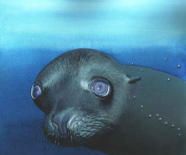 El lobo marino
