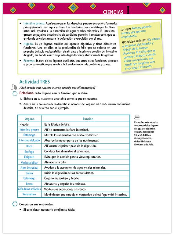Ciencias. Énfasis en Biología. Libro para el maestro. Telesecundaria ...