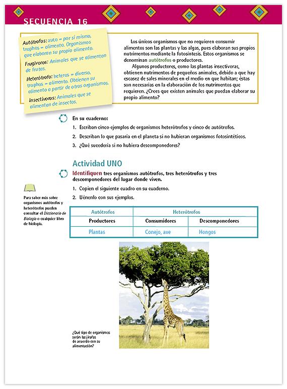 Contin 250 A La Actividad 28 Images Convenio Colectivo
