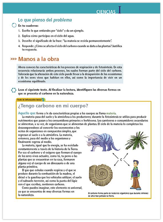 Contemporáneo La Hoja De Respuestas Del Ciclo Del Carbono ...